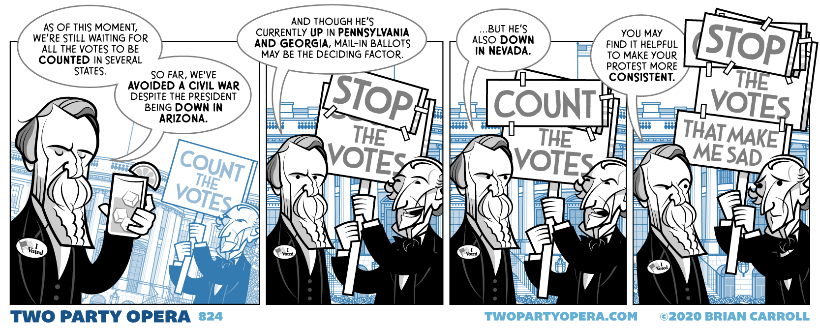 Count and/or Stop the Vote